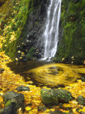 Starvation Creek Falls Creates a Maple Leaf Whirlpool on Water Photographic Print by Steve Terrill