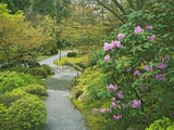 Japanese Garden at the Washington Park Arboretum, Seattle, Washington, USA Photographic Print by Dennis Flaherty