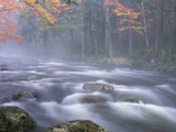 Big Moose River Rapids in Fall, Adirondacks, New York, USA Fotodruck von Nancy Rotenberg