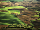 View of Palouse Farm Country Cultivation Patterns, Washington, USA Photographic Print by Dennis Flaherty