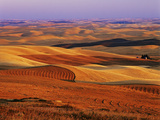 View of Colorful Palouse Farm Country at Twilight, Washington, USA Photographic Print by Dennis Flaherty