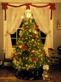 Decorated Christmas Tree Displays in Window, Oregon, USA Photographic Print by Steve Terrill