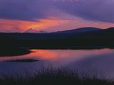 Sunset Reflecting in Upper Klamath Lake with Mt. Shasta, Upper Klamath National Wildlife Refuge Photographic Print by Steve Terrill
