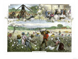 African American Slaves Picking, Baling and Ginning Cotton by Steam Giclee Print