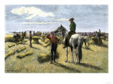 Harvesting Wheat on a Dakota Bonanza Farm, c.1880 Giclee Print