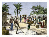 Slaves Bringing in the Cotton Harvest Premium Giclee Print
