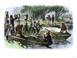 Plantation Slaves Loading Rice to a Barge on the Savannah River, 18th Century Giclee Print