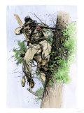 Confederate Sharpshooter Taking Aim from His Perch in a Tree, American Civil War Giclee Print
