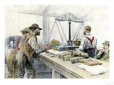 Klondike Miners Weighing Their Gold in a Dawson City Bank, c.1898 Giclee Print