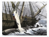 Whalers Removing Blubber from a Dead Whale Giclee Print