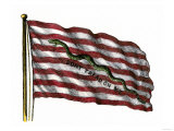 Colonists' Rattlesnake Flag with Don't Tread on Me Slogan Giclee Print