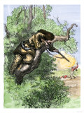 American Marksman in a Tree Firing at British Soldiers, Revolutionary War Giclee Print