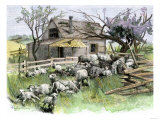 Sheep Near a Cottage in West Rutland, Vermont, c.1880 Reproduction procédé giclée