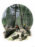 Minnesota Loggers Cutting Trees and Sawing Logs with a Two-Man Saw, c.1860 Giclee Print