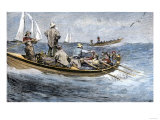 Dories Racing for a School of Fish, Atlantic Ocean, c.1880 Giclee Print