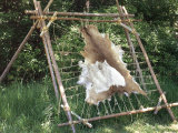Deer Hide Stretched on Sapling Frame to Be Scraped and Tanned, Heritage Hill, Green Bay, Wisconsin Photographie