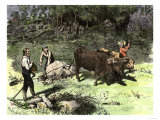 Spring Farmers Work to Clear Away Stones with an Ox Team Lámina giclée