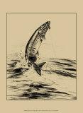 Fisherman's Delight III Prints by William J. Schaldach