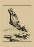 Fisherman's Delight IV Print by William J. Schaldach