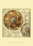 Vintage Rosette III Prints