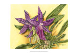 Vibrant Orchid IV Prints by Gloria J. Callahan