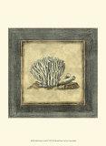 Exotic Coral IX Prints