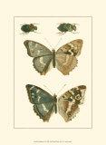 Papillion IV Posters