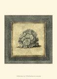 Exotic Coral V Prints