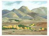 Western Vista V Art by Chariklia Zarris