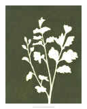 Four Seasons Foliage II Posters par Megan Meagher