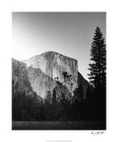 El Capitan in Shadow Giclee Print by Bradford Smith