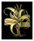 Dramatic Aloe I Posters by Besler Basilius