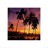 Fijian Sunset Posters