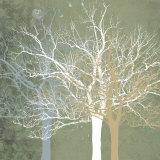 Quiet Forest Plakat af Erin Clark