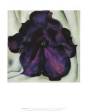 Purple Petunia Prints by Georgia O&#39;Keeffe