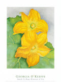 Squash Blossoms Poster by Georgia O'Keeffe