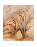 Winter Cottonwoods Affiches par Georgia O'Keeffe