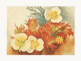 Mariposa Lilies Print by Georgia O'Keeffe