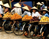Vietnam Plakater af Paul Chesley