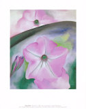 Petunia no. 2 Prints by Georgia O'Keeffe