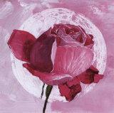 Rose Sur Pois Blanc Art by Valerie Roy