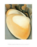 Tan Clam Shell Art by Georgia O&#39;Keeffe