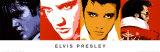 Elvis Presley Poster