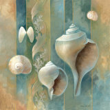 Ocean Treasures II Poster by Elaine Vollherbst-Lane