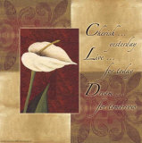 Calla Lily: Cherish Live Dream Posters by Maria Girardi