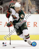 Marian Gaborik Photo