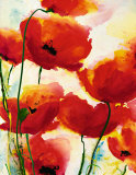 Roter Mohn Affiches par Heidi Reil