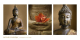 Spiritual Knowledge Prints by Tom Weber
