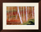The White Forest Print by Robert Pellelt