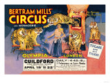 Togare and his Tigers: Bertram Mills' Circus and Menagerie Art